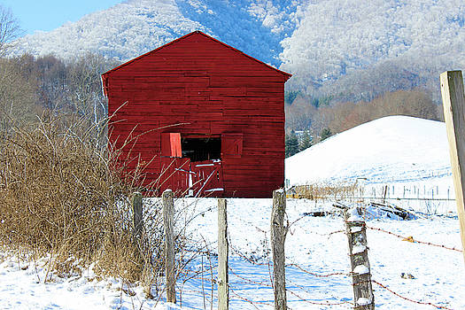 Red by Blue Ridge Mountain Life
