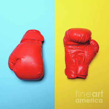 Red boxing gloves on blue and yellow background - Flat lay by Aleksandar Mijatovic