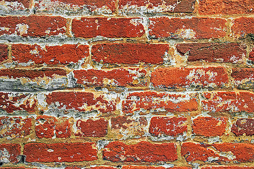 Red Brick Wall by John Cardamone