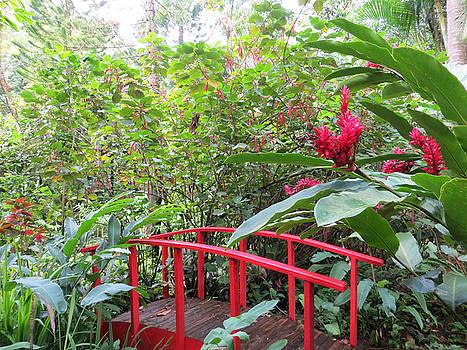 Red Bridge by Teresa Wing