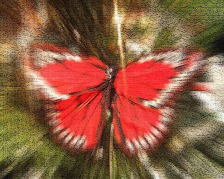 Red Butterfly    by Sherry Oliver
