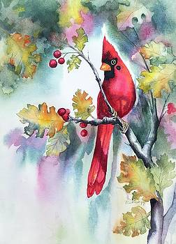 Red Cardinal with Berries by Hilda Vandergriff