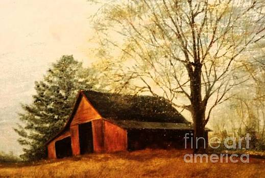 Red Carolina Barn by Lynda Carter