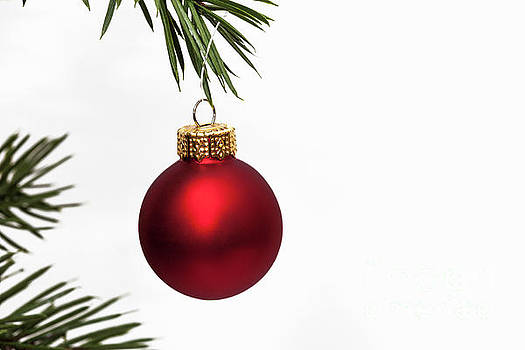 Red Christmas Bauble by Diane Macdonald