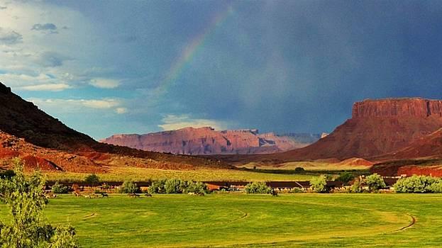 Red Cliffs Utah Rainbow by Barkley Simpson