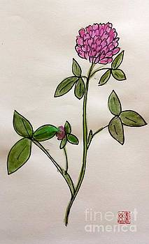 Red Clover Blossom by Margaret Welsh Willowsilk