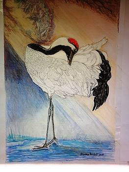 Red-crowned crane by Blossom Hackett
