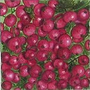 Red currants by Elizabeth H Tudor