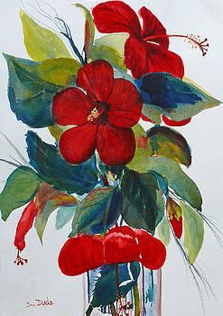 Red Dance by Susan Duda