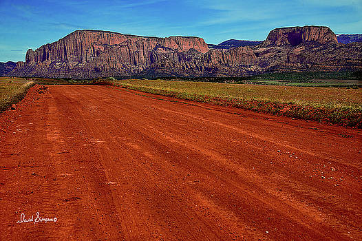 Red Dirt Road by David Simpson