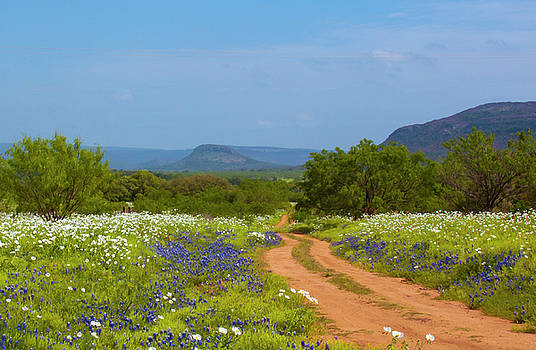 Red Dirt Road With Wild Flowers by Brian Kinney