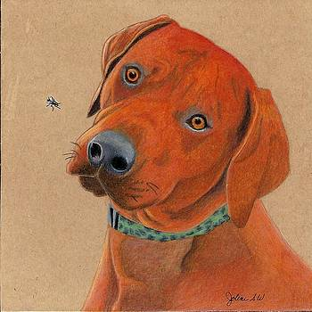 Red Dog by Jolene Stinson Williams