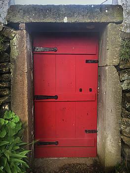 Red Door at the Wine Museum of Biscoitos by Kelly Hazel
