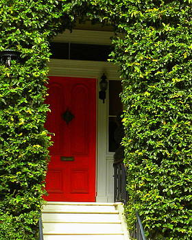 Red door by Kim Zwick