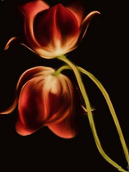 Red Emperor Tulips by Michele Koutris
