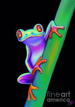 Nick Gustafson - Red Eyed Tree Frog Hanging On