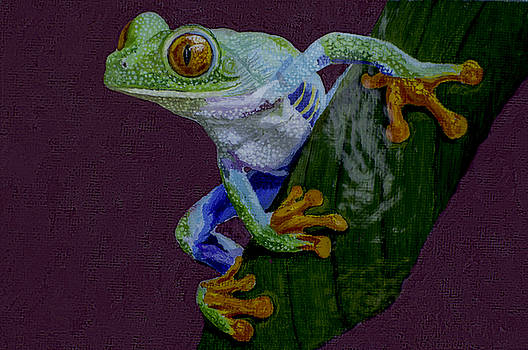 Manuel Lopez - Red Eyed Tree Frog original oil painting 4x6in
