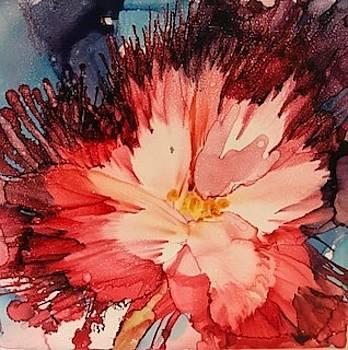 Red Feathery Flower by Brenda Owen