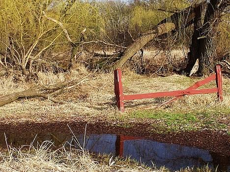 Red Fence by Anna Villarreal Garbis