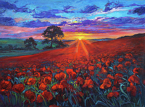 Red field by Ivailo Nikolov