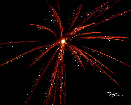 Red Fireworks #0699 by Barbara Tristan