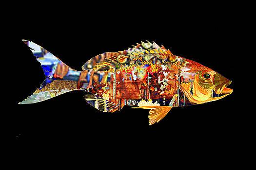 Red Fish  by Marc VanDermeer