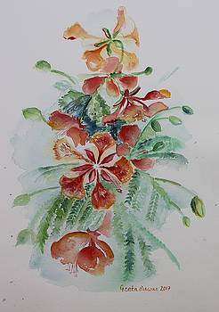 Red Flamboyant flowers still life in watercolor  by Geeta Biswas