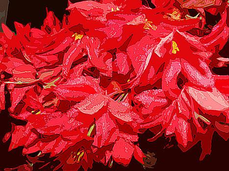 Red flowers-1 by Emrazina Prithwa