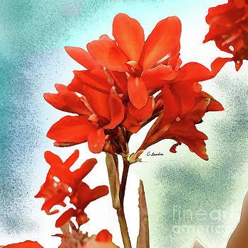 Red Flowers by Claudia Ellis by Claudia Ellis