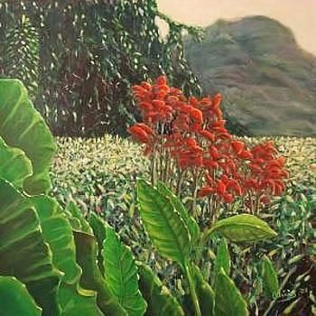 Red Flowers by Gustavo Alvarez