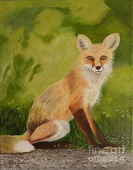 Red Fox 1 by Alicia Fowler
