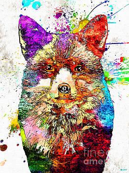 Red Fox by Daniel Janda