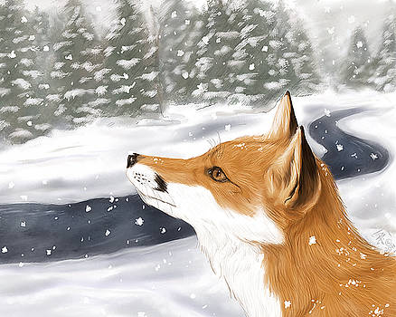 Red Fox in Snow by Brandy Woods