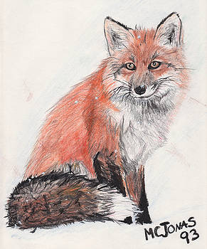 Red Fox in Snow by Marqueta Graham