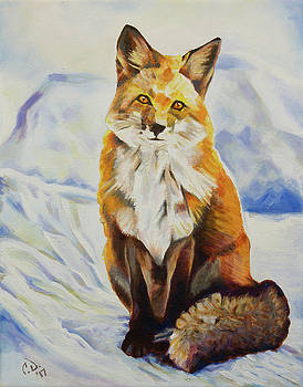 Red Fox Sitting in Snow by Cameron Dixon