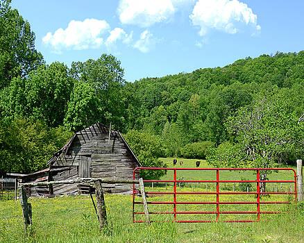 Red Gate by Susan Leggett