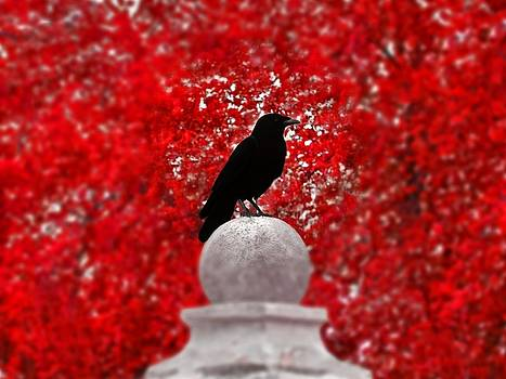 Gothicrow Images - Red