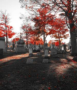Gothicrow Images - Red Fall Graveyard