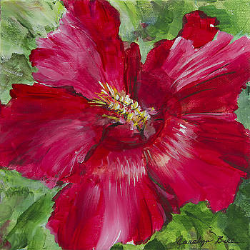 Red Hibiscus by Carolyn Bell