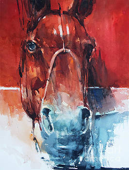 Red Horse by Tony Belobrajdic