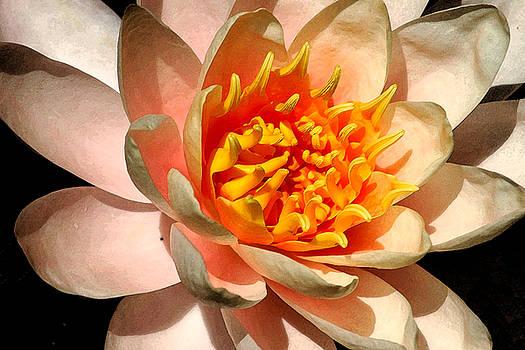 Robert Anschutz - Red Hot Blossom
