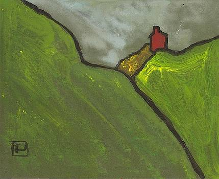 Red house on a hill by Peter  McPartlin