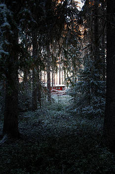 Red hut in a dark wintry forest by Ulrich Kunst And Bettina Scheidulin