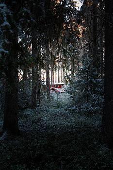 Red hut in a dark wintry forest by Ulrich Kunst And Bettina Scheidulin