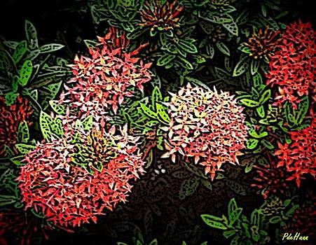 Red Ixora by Peggy De Haan