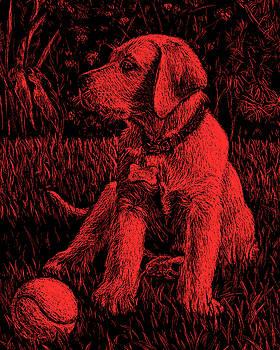 Red Labrador Puppy Dog by Irina Sztukowski
