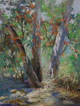 Red Leaves by Kelvin  Lei