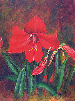 Red Lily by Aileen McLeod