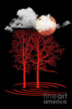 Red Moon by Barbara Dudzinska
