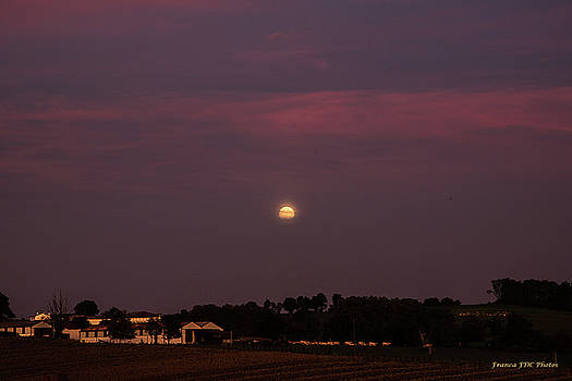 Red Moon on Sunset by Francoise Dugourd-Caput